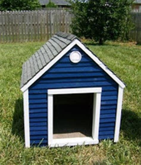 hinged roof dog house peredpetretreats dog house design hinged roof