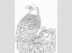 Bald Eagle Coloring Pages for Kids (Printable ... Eagle Coloring Pages Free