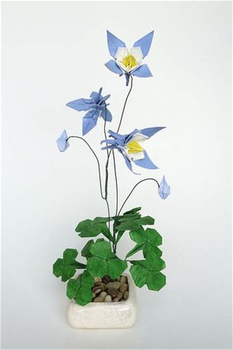 Origami Columbine - origami and photos on