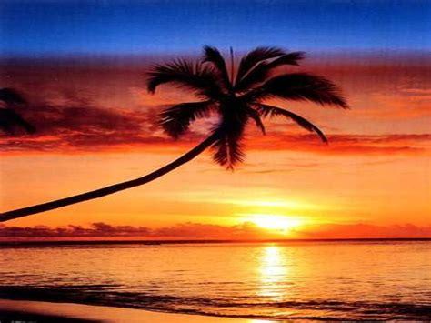 top  amazing   beautiful sunset views