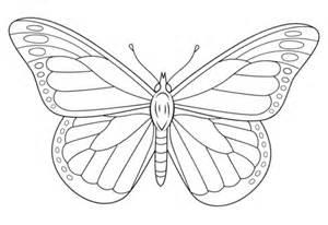 coloriage monarque papillon coloriages 224 imprimer gratuits