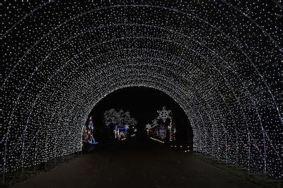 farmers branch tour of lights 12 things to do in dfw this weekend dec 11 13