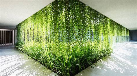 wall hanging garden lush spa in is like a modern age hanging garden