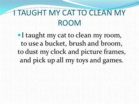 my cat my room narrative poem