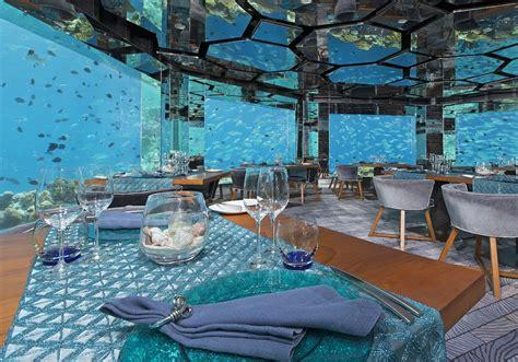 trivago londra appartamenti hotel ai tropici non avresti bisogno di una vacanza qui