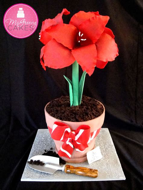 Fatona My plant pots flower pot cake and sugar on