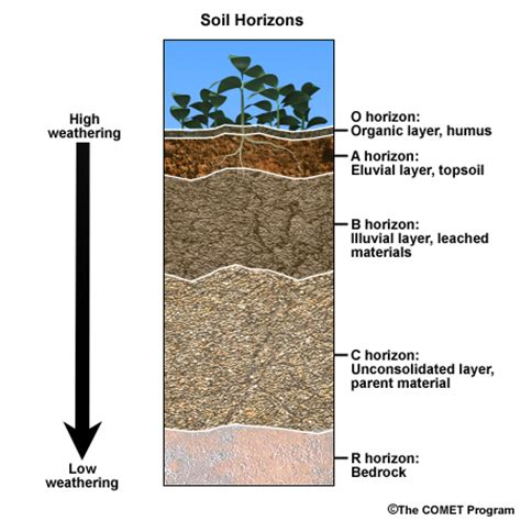 soil horizons diagram basic hydrologic science course