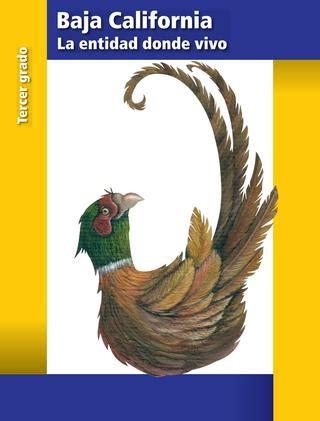 descargar erikas story libro de texto gratis primaria tercer grado baja california la entidad donde vivo libro de texto by admin mx issuu