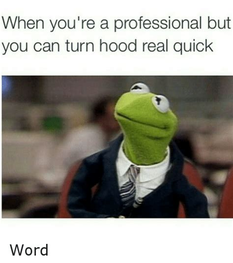 Professional Meme - when you re a professional but you can turn hood real