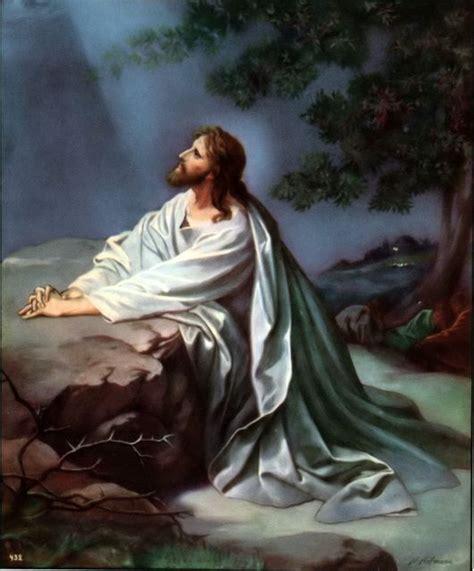 faith  bible studies jesus   garden
