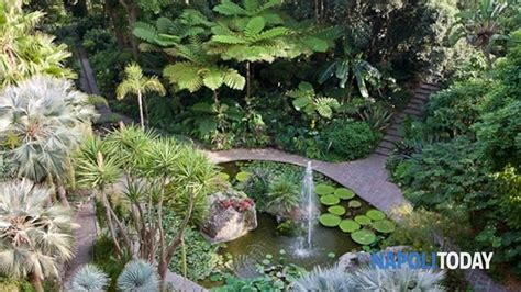 giardini la mortella ischia ischia giardini la mortella spettacoli e musica per l