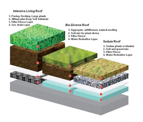 terrace garden section is a sedum roof covering best for a diy green roof