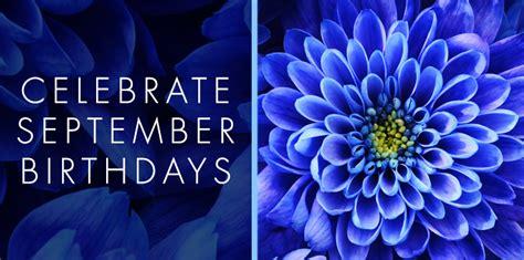 september sapphire birthdays nanz and kraft florists