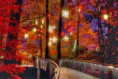 gorgeous lights at atlanta botanical gardens gac