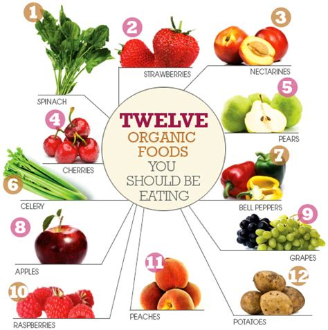 organic food organic organic organic what does organic really infographic lean it up