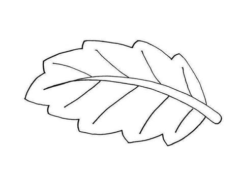 leaves coloring pages colored and print the other design of banana leaf coloring pages