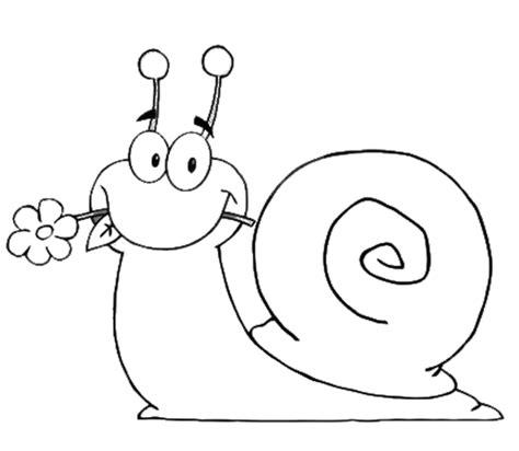 snail coloring pages preschool snail coloring pages 3 171 preschool and homeschool