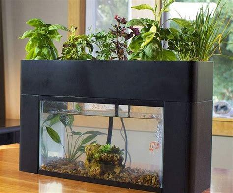 sustaining aquarium garden