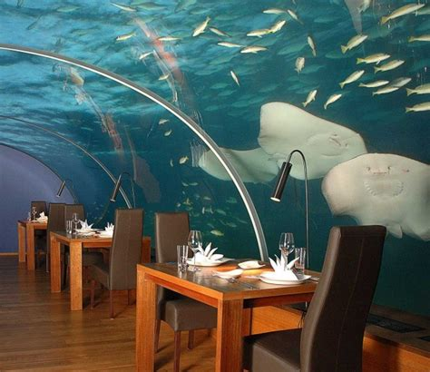 Maldives Resorts: A Restaurant Underwater In The Maldives Sea
