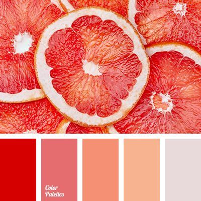 bright color color of grapefruit color of grapefruit pulp grey color palettes grey