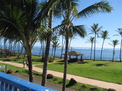 kauai beach house hostel kauai beach house hostel kauai hawaii reviews hostelz com