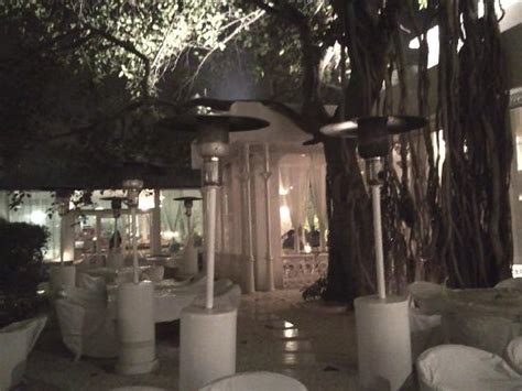 Olive Bar Kitchen Qutub The Courtyard One With The Nature Picture Of Olive Bar