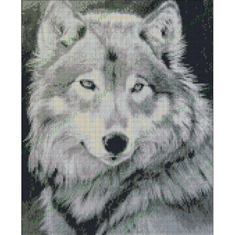 imagenes en blanco y negro de lobos lobo blanco y negro