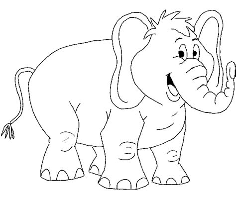 animal coloring pages elephant baby elephant coloring pages animal