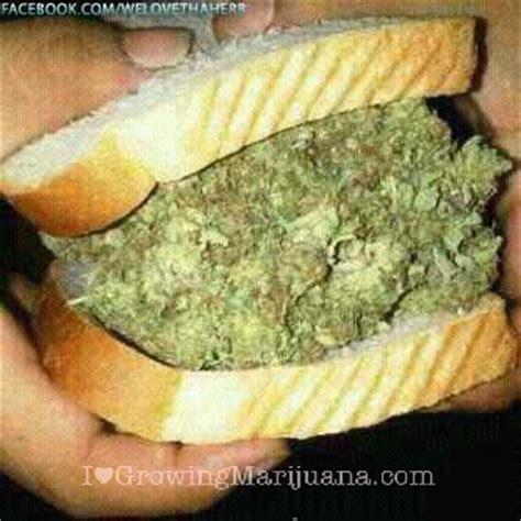 eats marijuana and cooking with marijuana