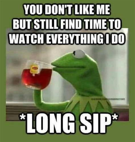 Funny Stalker Memes - lol stalker kermit the frog funnies pinterest over