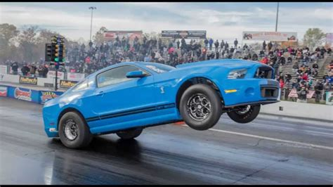 2000 mustang gt500 wheelie king hp 2000 shelby gt500 evolution performance
