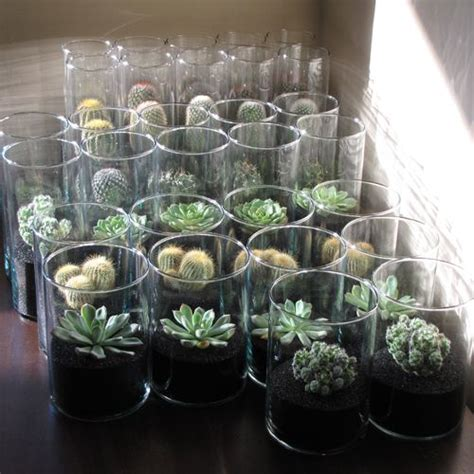 succulent centerpieces for sale jodi and karl s wedding in arizona floral verde llc home cactus