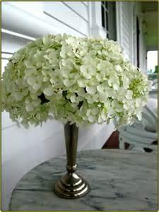 Zig Zag Bookshelf Hydrangea Flower Arrangement Home Design Ideas