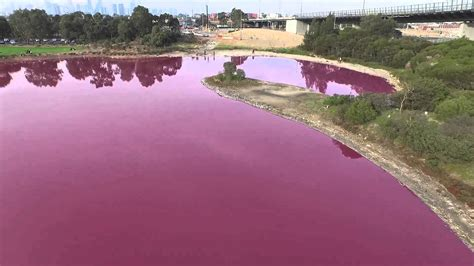 pink lake melbourne melbourne pink lake drone footage youtube