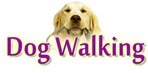 walking services walking the east walks animal boarding pet visits care and