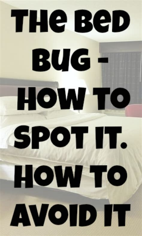 How To Avoid Bed Bugs by The Bed Bug How To Spot It How To Avoid It Eat Sleep