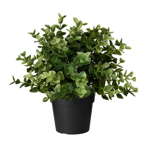 Stand Tanaman Askholmen Ikea fejka artificial potted plant ikea