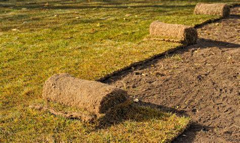 Grasnarbe Entfernen by Rasen Entfernen 187 So Gehen Sie Vor