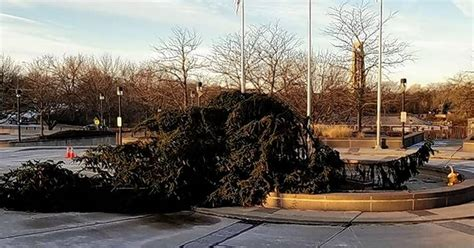whipping winds broken cl topple naperville holiday tree