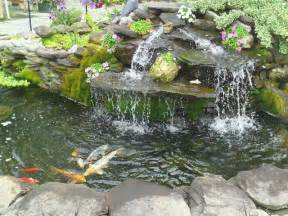 waterfall pond with koi fish contemporary landscape dc metro by cbell ferrara