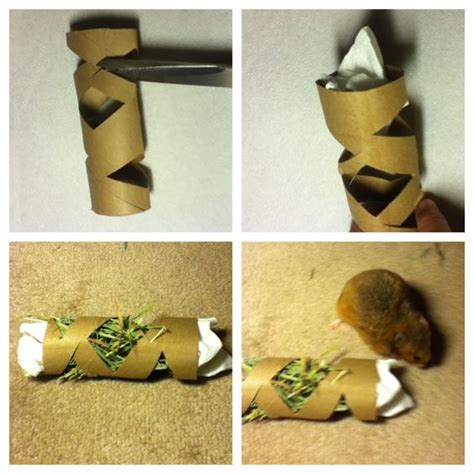 How To Make Easy Paper Toys - 17 best images about easy hamster toilets toys and towels