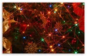 meaning tree lights tree lights 4k hd desktop wallpaper for 4k ultra