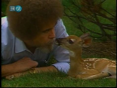 bob ross painting deer pictures of bob ross with animals