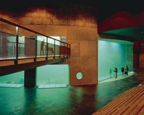aquarium design yorkshire 227 best images about oceanarium on pinterest museums