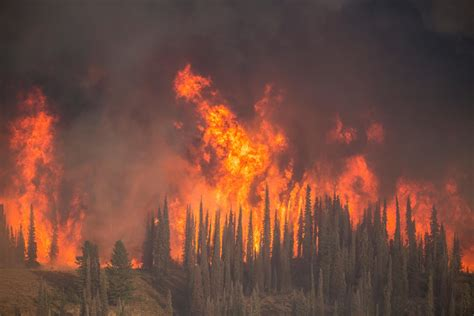 wildfire at pioneer makes list of top 10 most expensive western