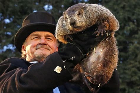 where to groundhog day phil sees his shadow on groundhog day