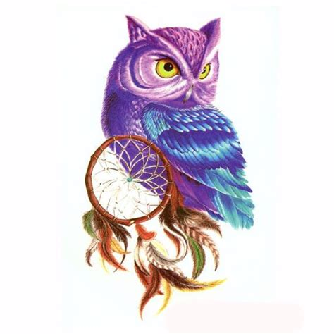 colorful owl colorful owl drawing www pixshark images galleries