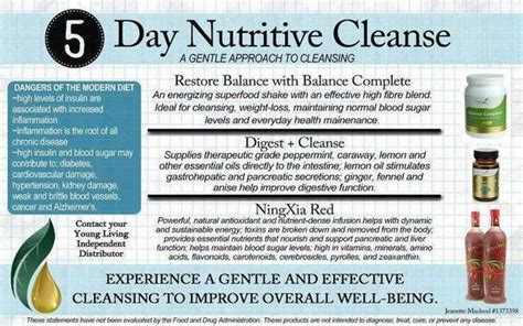 5 Day Whole Detox by Category 5 Day Nutritive Cleanse Roots Of Integrity