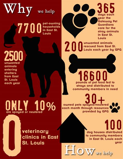 average cost of neutering a support spay neuter in east st louis gateway pet guardians