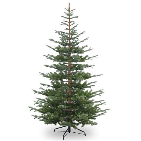 5 or 6ft real feel christmas trees at bargain prices 6ft nobleman spruce feel real artificial tree ideas
